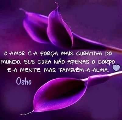 FB_IMG_1451251036479.jpg