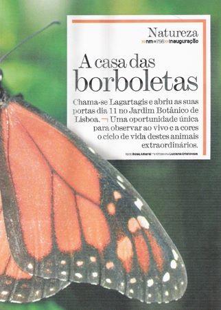 borboletario3.jpg