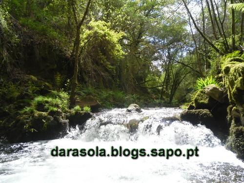 Rota_do_Gaia_21.JPG