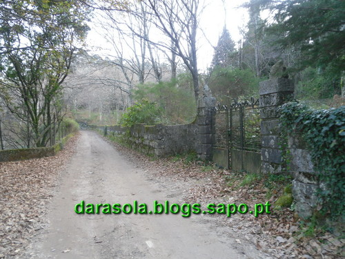 Trilho_Eiras_Famalicao_07.JPG