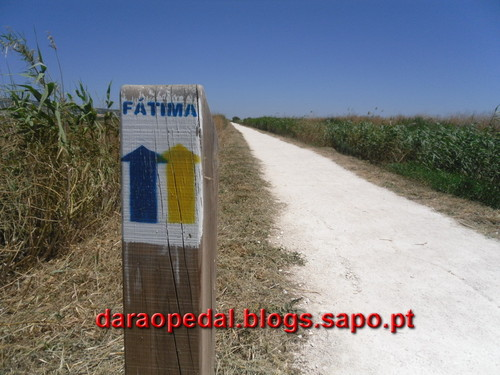 Fatima_Tomar_029.JPG