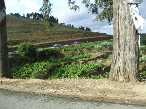 IX Passeio Aleu 2007 (49).jpg