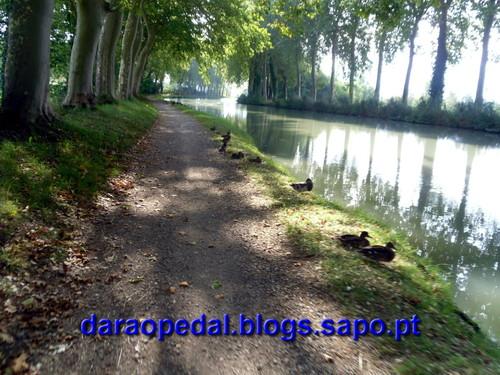 Canal_midi_dia_02_05.JPG