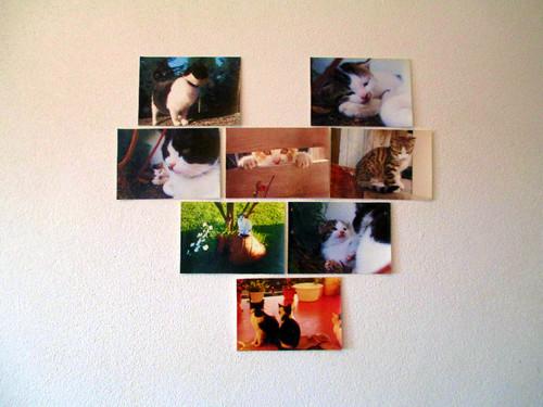 Fotografias1.jpg