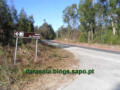 Gonde_Estarreja_17.JPG