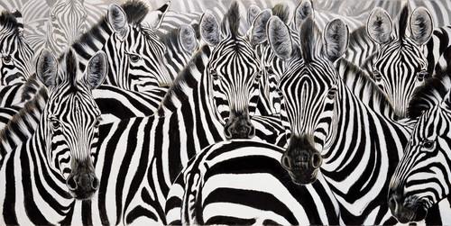 a preto e branco.jpg