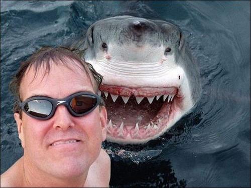 selfie-perigosa.jpg