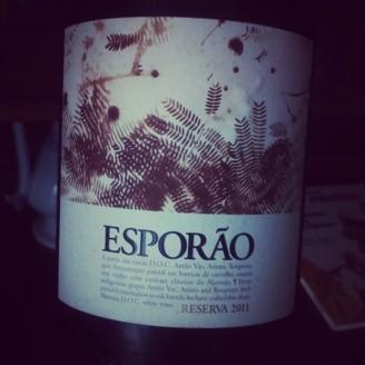 Esporao_Res_Br_11.JPG