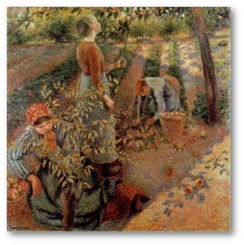 camille pissarro, apanhadoes de maçãs, 1886a.jpg