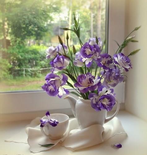 decor-flores-plantas-4.jpg