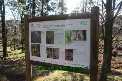 Biodiversidade_Freita_06.JPG