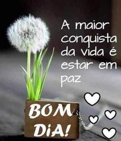 FB_IMG_1465757360963.jpg