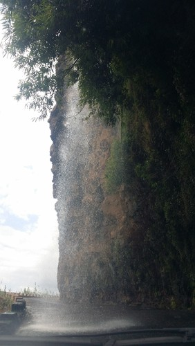 Madeira (424).jpg
