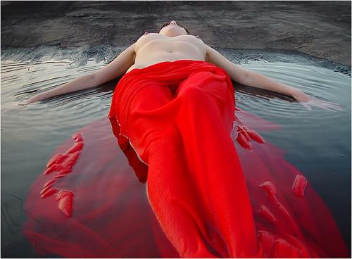 Jane Maclean.jpg