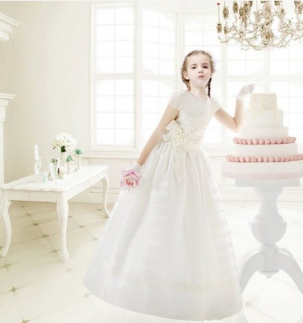 Awesome Short Sleeved Ball Gown Stripped Organza C