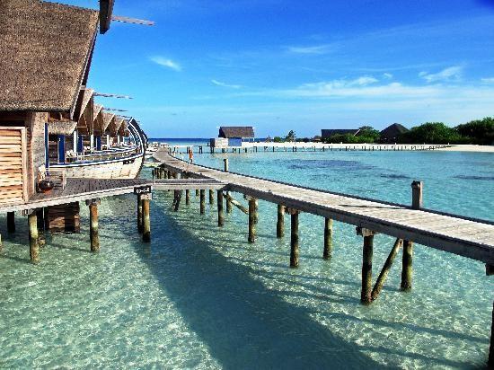cocoa-island-resort.jpg