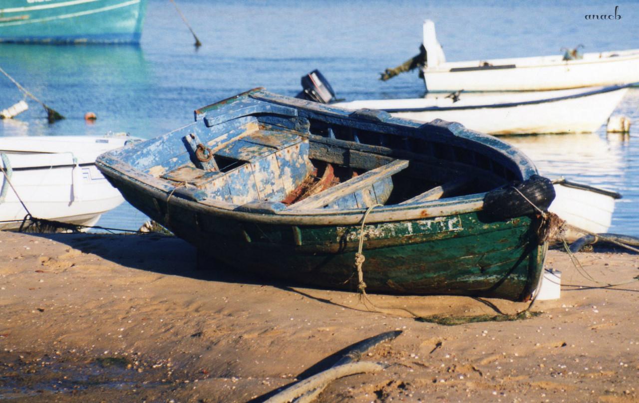 ao acaso #32 Ria Formosa, Algarve.jpg