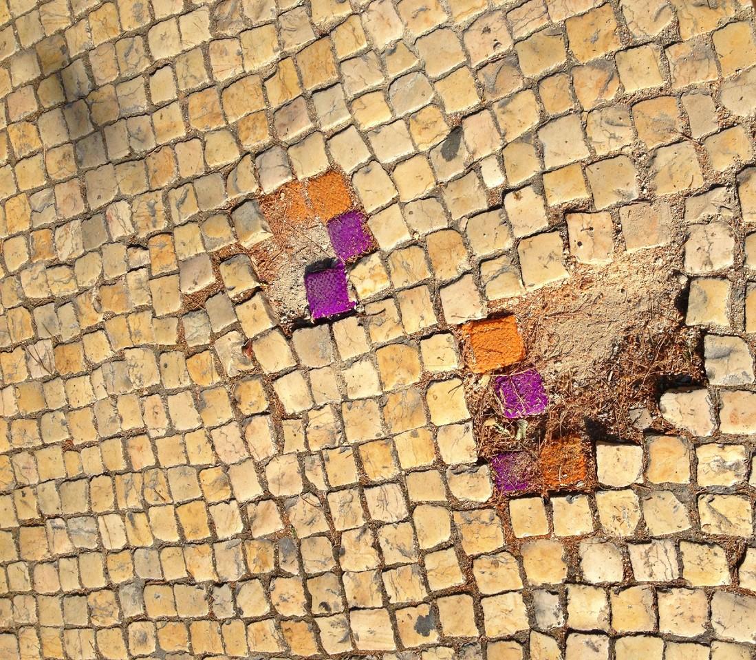 calçada portuguesa.jpg