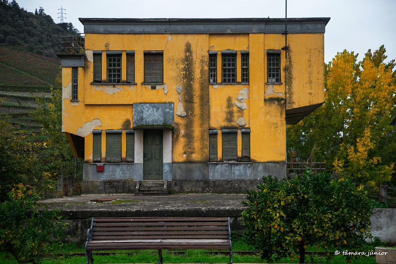 (05)2015 - Outono no Douro Vinhateiro II (185).jpg