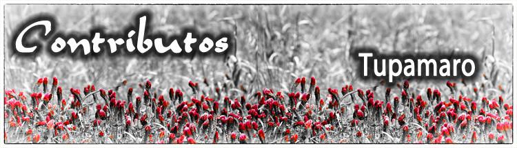 Contributos2014-Tupamaro.jpg