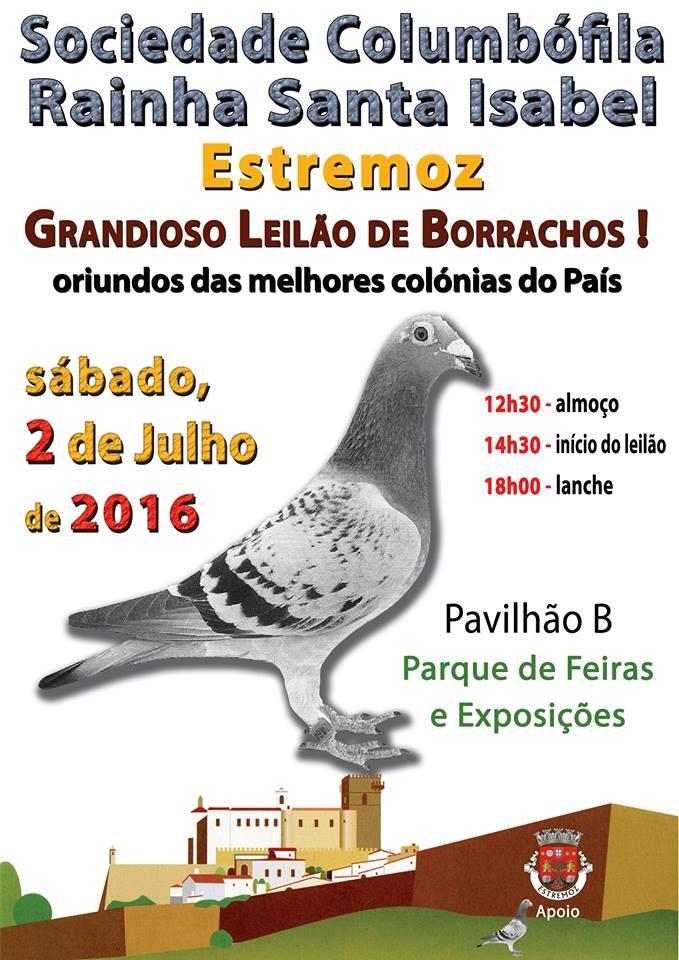 Leilão Estremoz.jpg