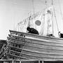 frota branca st. john´s terra nova 1967 2