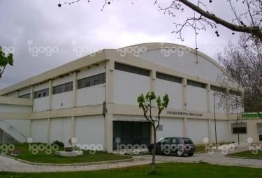 C:\Users\armando\Pictures\pavilhao-municipal-carlo