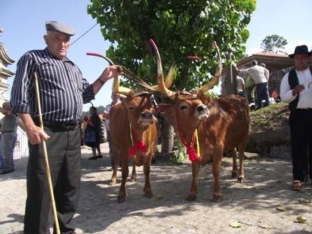 Feira de Padornelo 2012 M