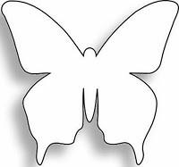 butterflyshapes_2.jpeg