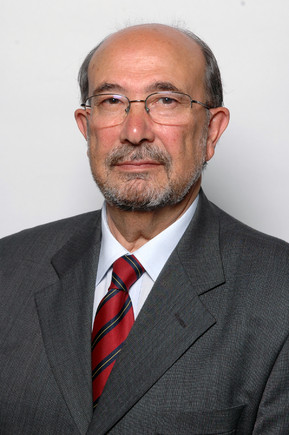 Defensor_Moura_Presidenciais2011.jpg