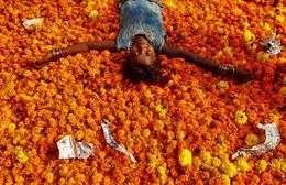 Festival Diwali, Índia