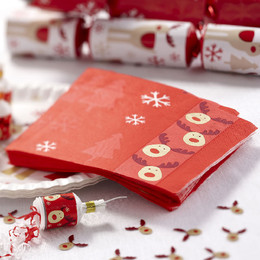 WEBL-595495-Rocking-Rudolf-Paper-Napkins.jpg