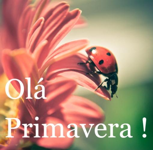 ola-primavera_MEMOS_[1].jpg