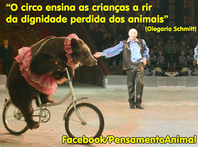 OLEGÁRIO.png