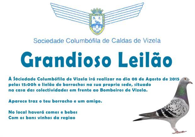 Leilão Vizela.jpg