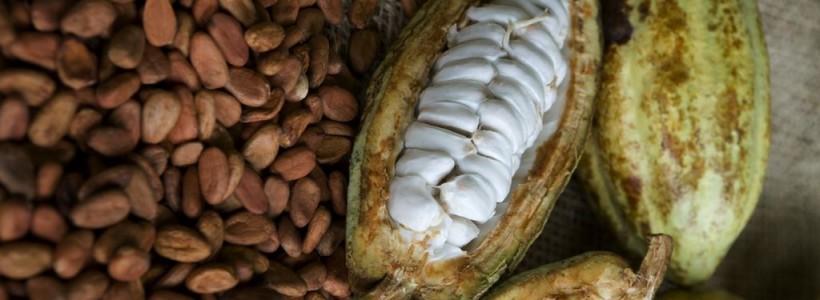 chocolate-mexicano-2-820x300.jpg