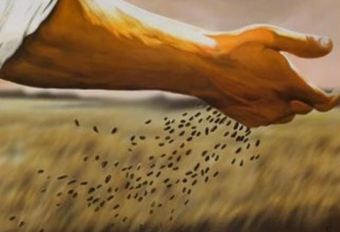 semear.jpg